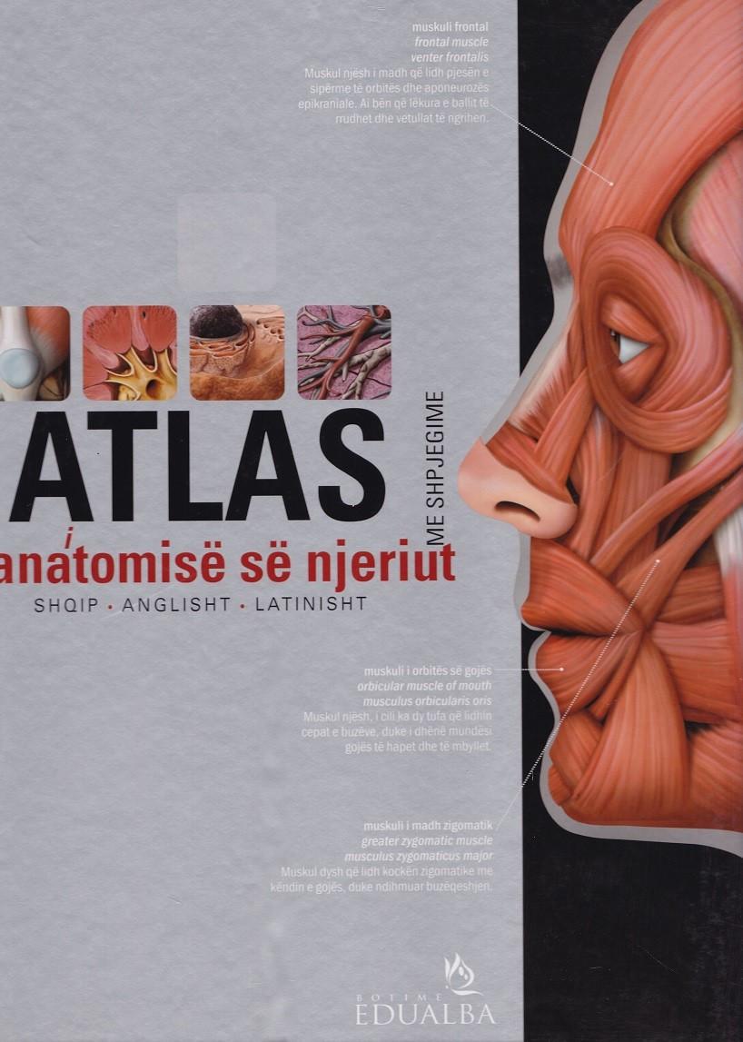 Atlasi i anatomisë